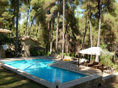 Photo for Beautiful villa within the forest