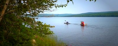 """Photo for West LA """"Eagles Play"""" by DMNikas Lakefront Property Near INVERNESS"""