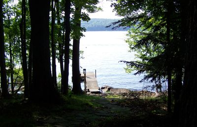 Lakefront view from cabin
