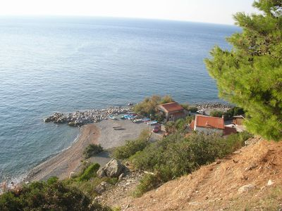 Photo for blue house holiday house 20 meters from the sea pomonte island of Elba