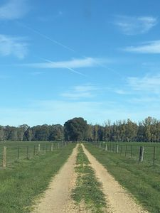 Photo for Farmstay with private river beach only 2 hours from Melbourne