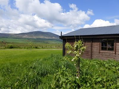 Photo for 2BR Cottage Vacation Rental in Dumfries, Dumfries and Galloway