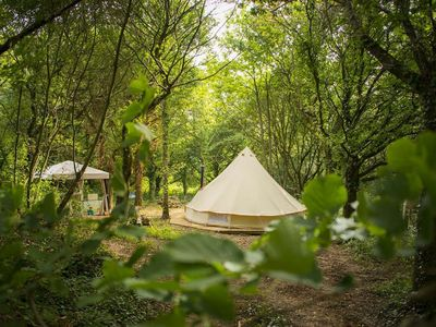 Photo for Gabriel - Bell Tent in beautiful Woodland setting