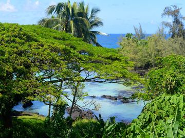 Keaukaha Beach Park, Hilo, Hawaii, United States