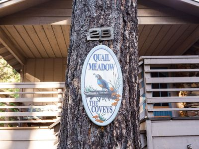 Photo for Quail Meadow - Get Your Nature On!