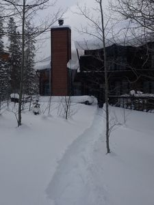 The back of house. Snow, snow and more snow!
