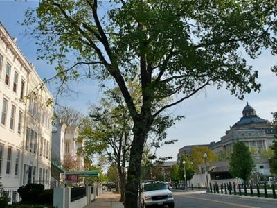 Photo for 1 block to Capitol, National Mall - One Bedroom Apartment, Sleeps 4