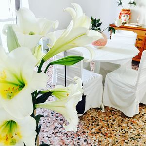 Photo for JEWEL SICILY - A DELICIOUS APARTMENT IN FEW STEPS FROM THE ORTIGIA ISLAND