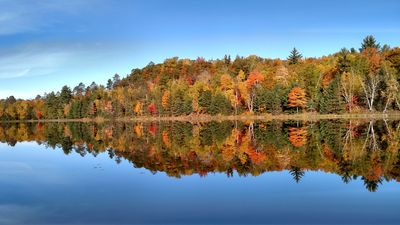 Indian summer colors at their peak. Try painting this picture next fall.