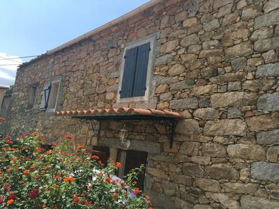 Photo for Typical Corsican country house