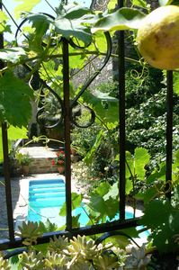Photo for Traditional stone winemaker's house with beautiful courtyard garden and pool