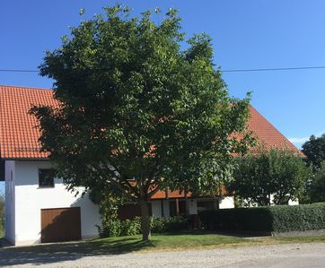 Photo for Holiday apartment Tannheim for 1 - 5 persons with 3 bedrooms - Holiday apartment