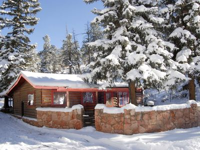Photo for Authentic Pikes Peak Log Cabin nestled in America's mountain