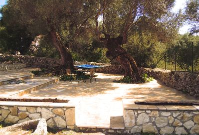 Rest in the shade of our olive trees.