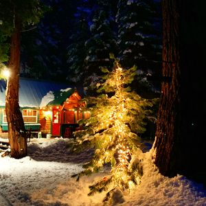 Photo for Fairytale Tahoe Woodhaven Cabin