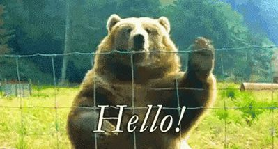 We love to give our guest a bear hug welcome to our cottage.