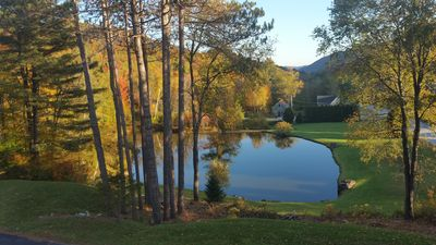 Gorgeous pond view from house.