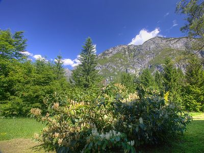 Photo for Apartment Apartment Savica in Bohinj - 4 persons, 1 bedrooms