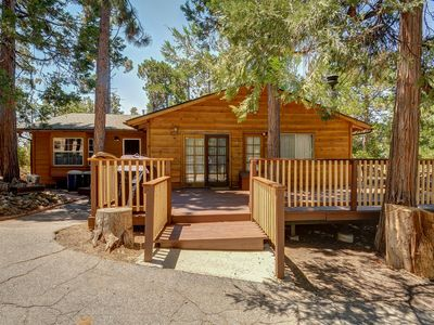 Photo for Homey, dog-friendly cabin w/ large deck surrounded by forests