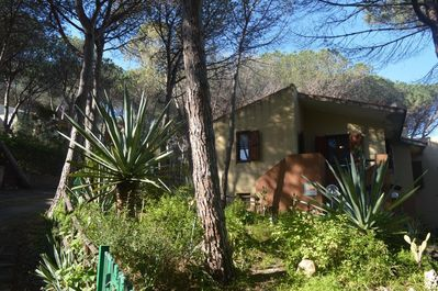 the house is inside a pine forest at 700 meters from the beach