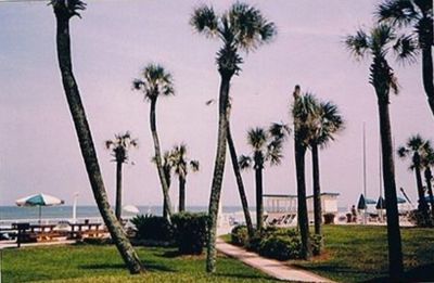 Photo for Beautiful Ocean View Condo Daytona Beach