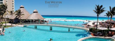 Westin Lagunamar Oceanview 1 Bedroom Premium , 740 SQF - Full Resort Access
