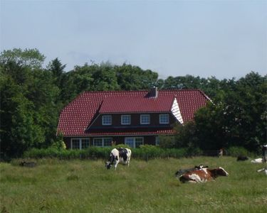 Photo for Apartment near Norddeich in rural idyll