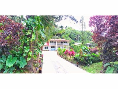 Photo for Beautiful House in Famous Tantalus Heights