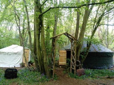 Photo for Ancient Woodland Retreat