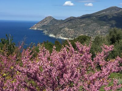 Photo for 2BR House Vacation Rental in Canari, Corse