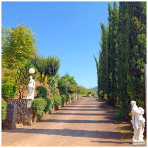Photo for Villa Galeotti  7 Acres of Tuscany Dream