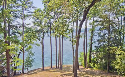 Photo for Dragonfly Bungalow minutes from Oaklawn on Lake Hamilton...