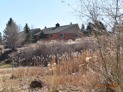 Photo for Heron's Landing: Walk to town from 17 acres of wildlife preserve