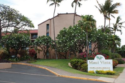Maui Vista is popular in affordability and comfort comfortable