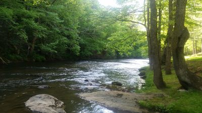 view of the beautiful, private, peaceful little river.