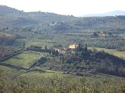 Photo for Hilltop paradise cottage, a stone's throw from Florence !