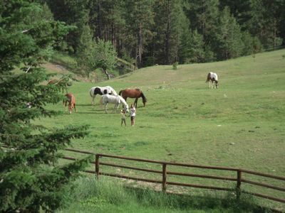 Photo for Fully Equipped Montana Guest Home w/kitchen, laundry, hot tub and hiking
