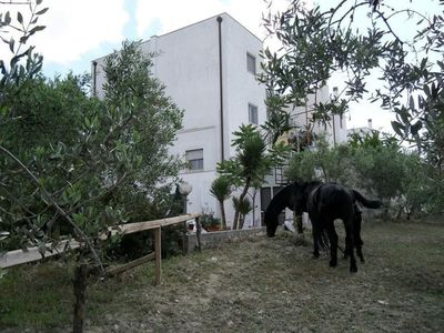 Photo for Stays-and-stay in a group in an oasis of green farm-5 min-old-center