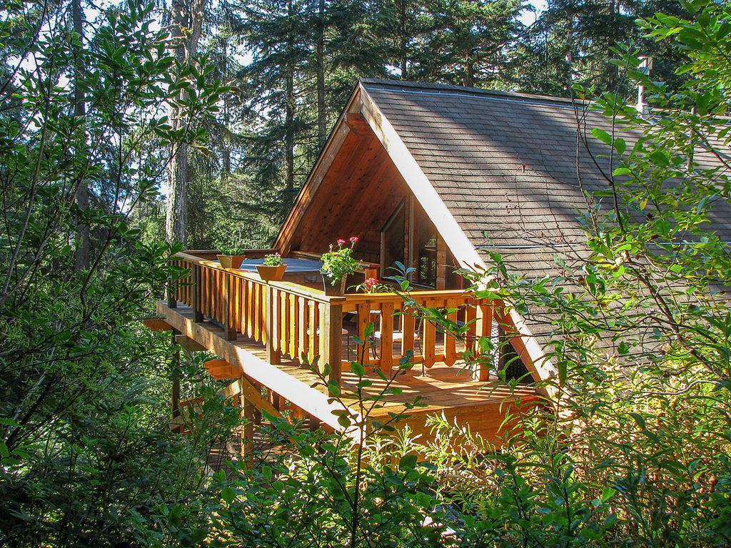Secluded wilderness get away in alaska 39 s vrbo for Alaska cottage