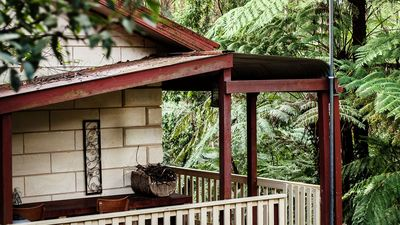 Photo for Fernglen Cottage in the forest of Mount Dandenong