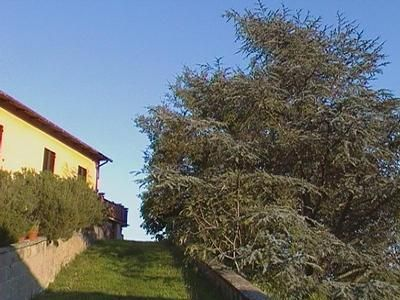 Photo for Holiday apartment Barberino di Mugello for 2 - 4 persons with 1 bedroom - Farmhouse