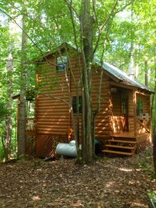 Log! Tiny home. Pond view.Owner built.Old growth pristine woods. Close to town.