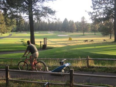View from back deck, looking down 15th fairway of Meadow's Golf Course