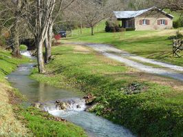 Photo for 4BR Cottage Vacation Rental in Normandy, Tennessee