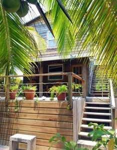 Photo for Caribbean island of Utila: Hummingbird House.