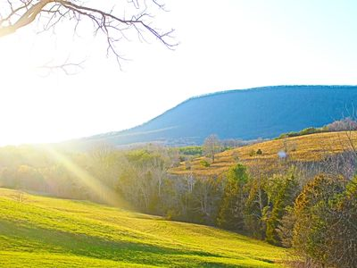 Photo for FatDog Farm - Picturesque & Just Minutes To Lexington, VMI and W&L