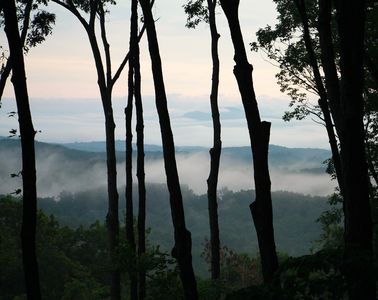 Photo for Relax in the Blue Ridge TreeTops - Super Clean! Sleeps 4 - Paved road to cabin