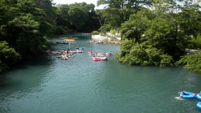 bring your own tube or rent one from an outfitter to float the Comal river