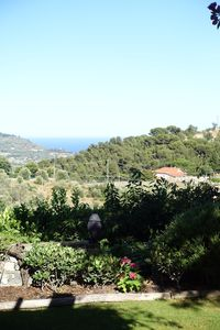Photo for Independent cottage surrounded by greenery at 15min from the sea!