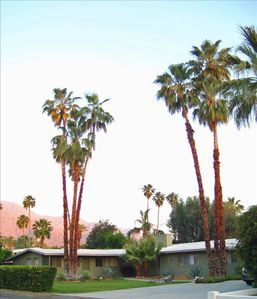 Photo for Mid Century Home Tahquitz Estates